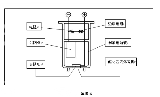 氧气传感器示意图-山东新泽仪器有限公司
